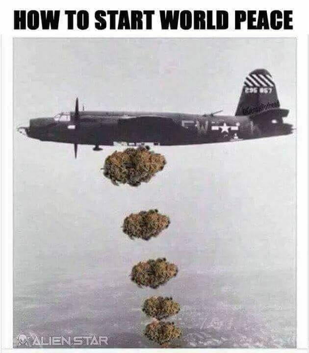 how-to-start-world-peace-weed-meme