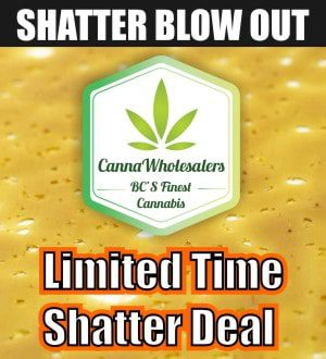 cannawholesalers-wholesale-shatter-canada-deal