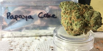 how-much-is-a-gram-of-weed-1-gram-bud