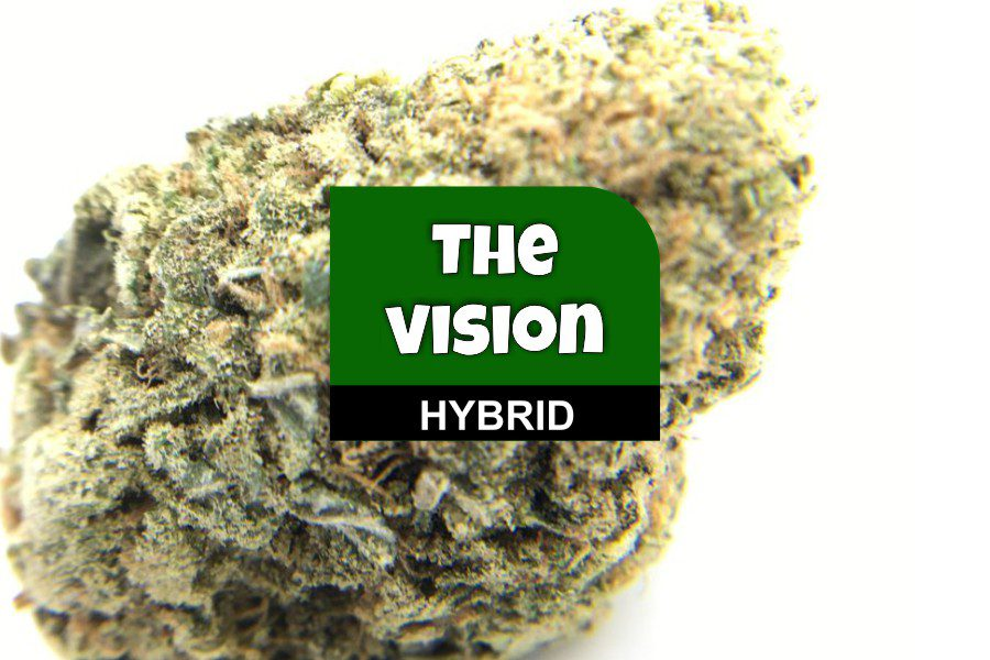 The Vision Strain Review