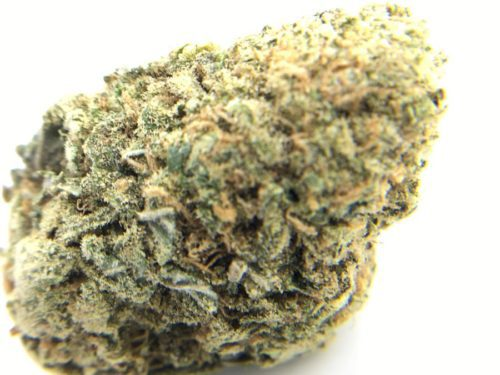 the-vision-strain-review-5