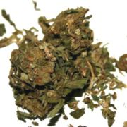 Weed-Grading-System-Canada-A-Grade-Cannabis