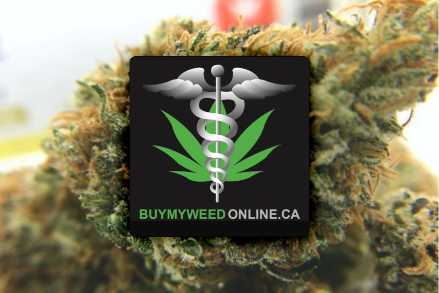 BuyMyWeedOnline (BMWO) Review & Unboxing