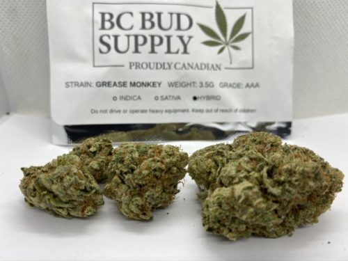 Grease-Monkey-Strain-Review-BC-Bud-Supply