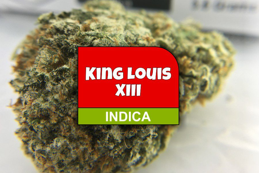 King Louis XIII Strain Review and Ratings