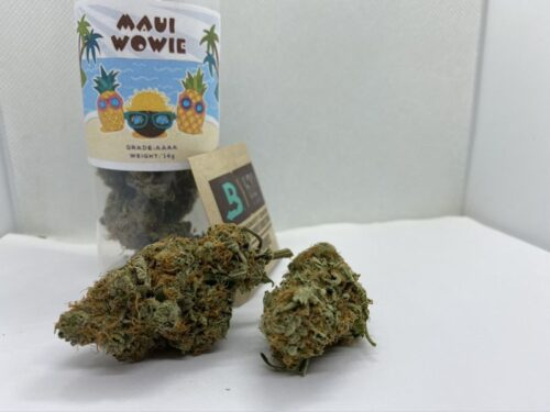 maui-wowie-strain-review-speed-greens
