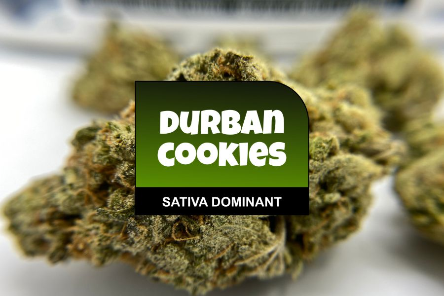 Durban Cookies Strain Review with Ratings