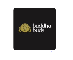 Buddha Buds Weed Delivery