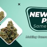 New Flower Pricing, Same Quality Products